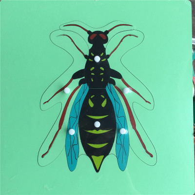 Wasp Knobbed Puzzle