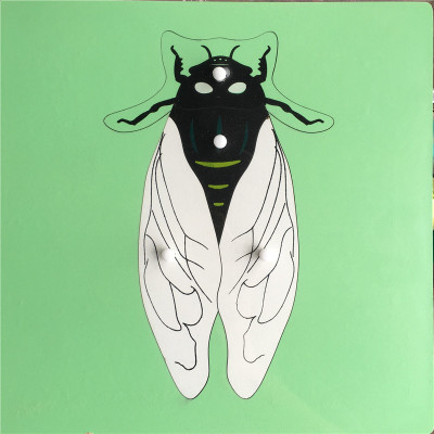 Fly Knobbed Puzzle